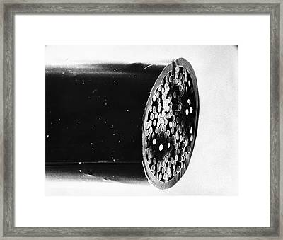 Dalkon Shield Iud Tailstring Sem Framed Print by David M. Phillips / The Population Council