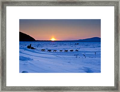 Dallas Seavey On The Yukon River Framed Print by Jeff Schultz