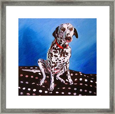 Dalmatian On Spotty Cushion Framed Print by Helen White