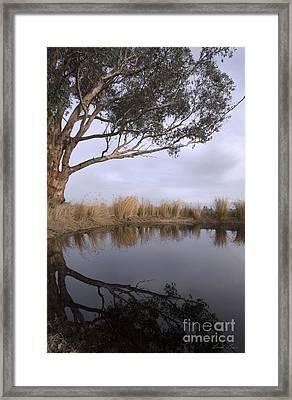Dam Framed Print by Linda Lees