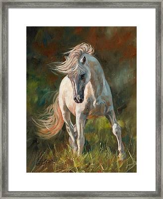 Dance Like No One Is Watching Framed Print by David Stribbling