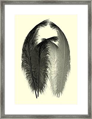 Dance Of The Feathers Framed Print by David Dehner