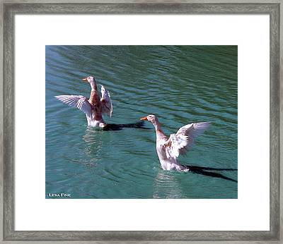 Dances On Water Framed Print by Lesa Fine