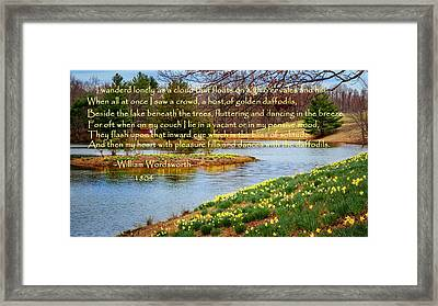Dances With The Daffodils Framed Print by Bill Wakeley