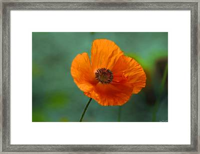 Dancing Alone Framed Print by David Simons