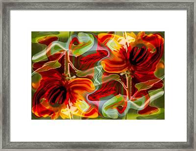 Dancing Flowers Framed Print by Omaste Witkowski
