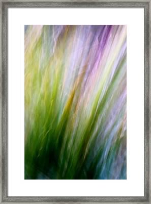 Dancing Grass Framed Print by Mah FineArt