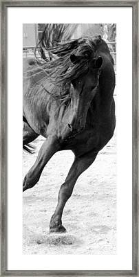 Dancing In Time Framed Print by Royal Grove Fine Art