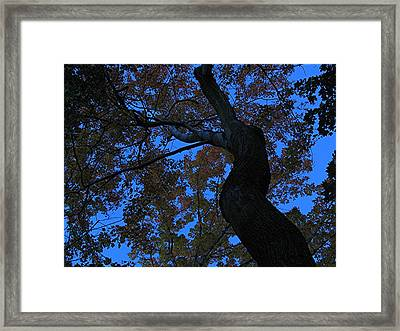 Dancing Framed Print by Juergen Roth