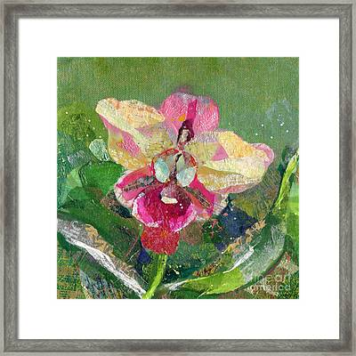 Dancing Orchid I Framed Print by Shadia Derbyshire