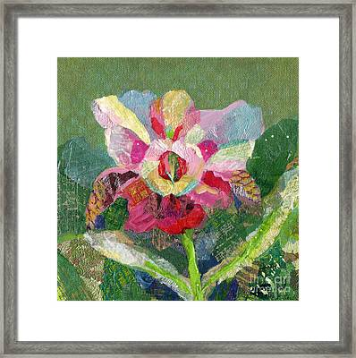 Dancing Orchid II Framed Print by Shadia Derbyshire