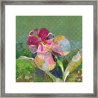 Dancing Orchid IIi Framed Print by Shadia Derbyshire