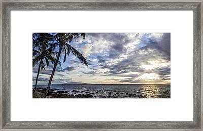 Dancing Palms Framed Print by Brad Scott