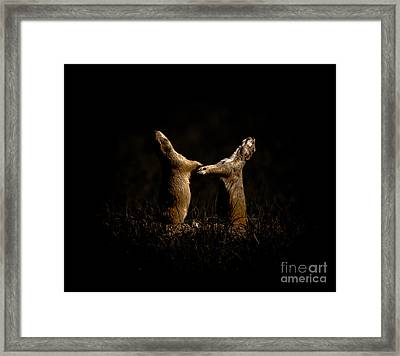 Dancing In The Moonlight Framed Print by Robert Frederick