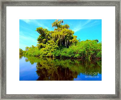 Dancing Willow Framed Print by Carey Chen