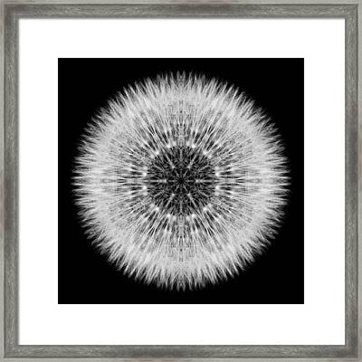 Dandelion Head Flower Mandala Framed Print by David J Bookbinder