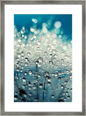 Dandy Blue And Drops Framed Print by Sharon Johnstone