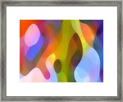Dappled Art 8 Framed Print by Amy Vangsgard