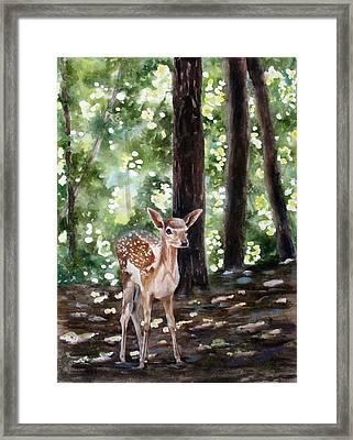 Dappled Innocence Framed Print by Mary McCullah