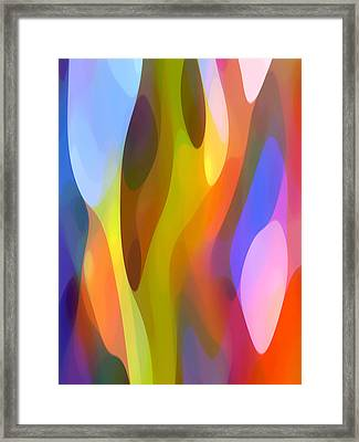 Dappled Light 3 Framed Print by Amy Vangsgard