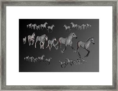 Dapples Framed Print by Betsy C Knapp
