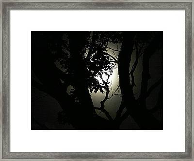 Dark Beauty Framed Print by Elizabeth Holland