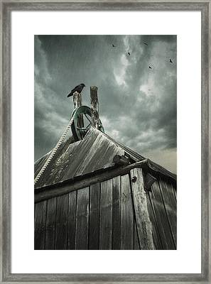 Dark Days Framed Print by Amy Weiss