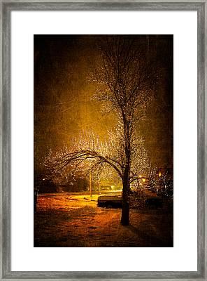 Dark Icy Night Framed Print by Sofia Walker
