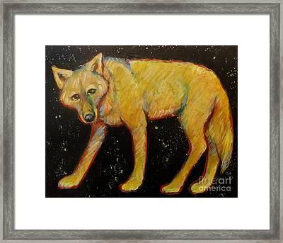 Dark Sky Coyote Framed Print by Carol Suzanne Niebuhr