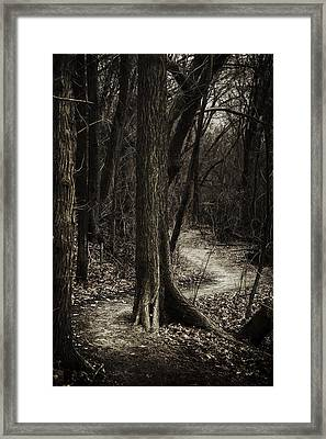 Dark Winding Path Framed Print by Scott Norris