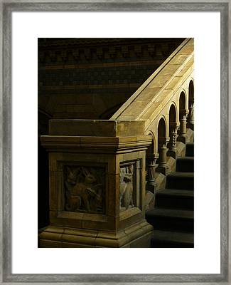 Darwin's Ascent Framed Print by Connie Handscomb