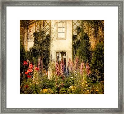 Darwin's Garden Framed Print by Jessica Jenney