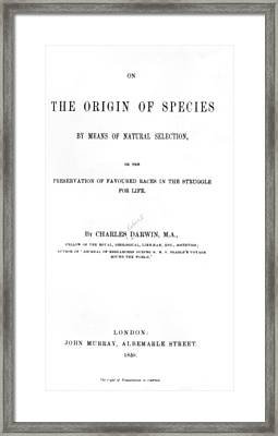 Darwin's The Origin Of Species Framed Print by Underwood Archives