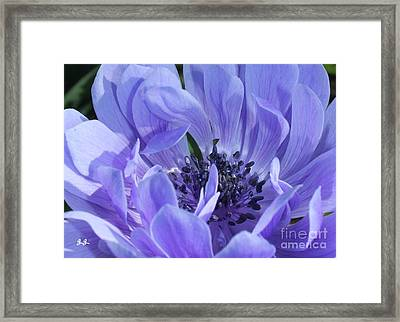 Daughter Of The Wind Framed Print by Geri Glavis