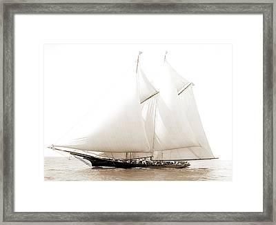 Dauntless, Dauntless Schooner, Yachts Framed Print by Litz Collection