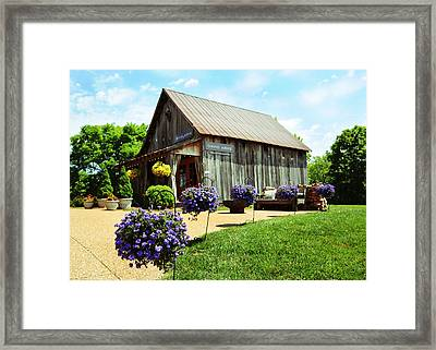 David Arms Gallery Framed Print by Gary Prather
