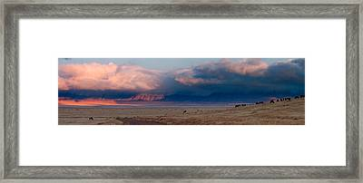 Dawn In Ngorongoro Crater Framed Print by Adam Romanowicz