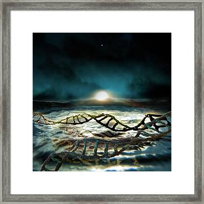 Dawn Of Life Framed Print by Richard Kail