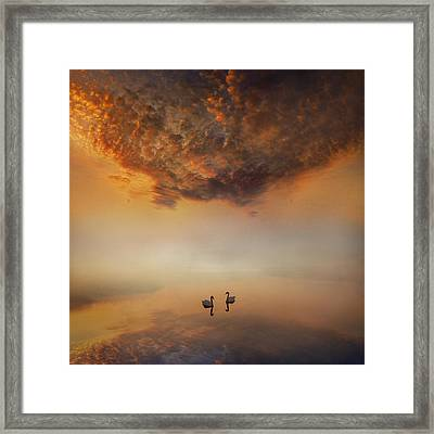 Dawn Tranquility Framed Print by Adrian Campfield