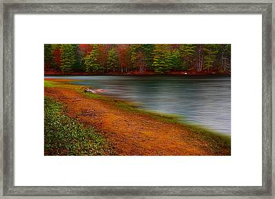 Day At The Park Framed Print by Lourry Legarde