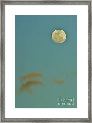 Day Moon Framed Print by Lynda Dawson-Youngclaus