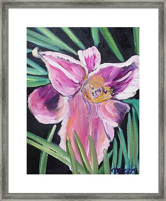 Daylily Framed Print by Melissa Torres