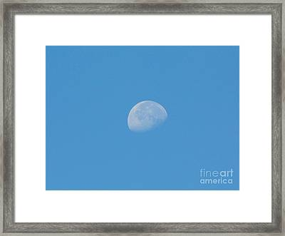 Daytime Moon Framed Print by D Hackett