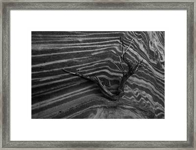 Dead Wave Framed Print by Mike Herdering