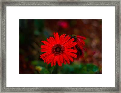 Death And Life Framed Print by Ethan Allen