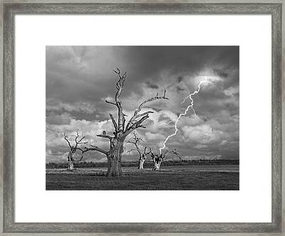 Death Strike Framed Print by Gill Billington