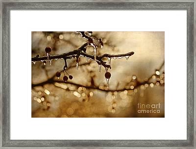 December Ice Framed Print by Darren Fisher