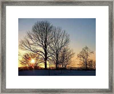 December Sundown Through The Trees Framed Print by Joy Nichols