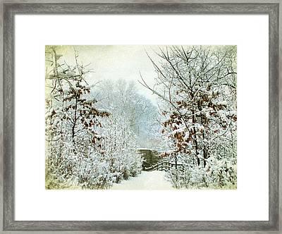 December's Path Framed Print by Jessica Jenney