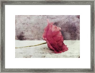 Decor Poppy Horizontal Framed Print by Priska Wettstein